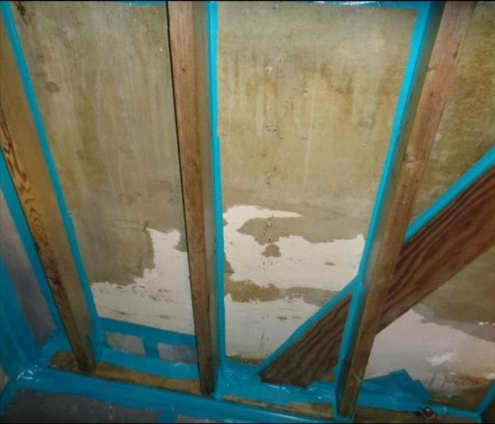 Laundry Storage Room affected by Mold After