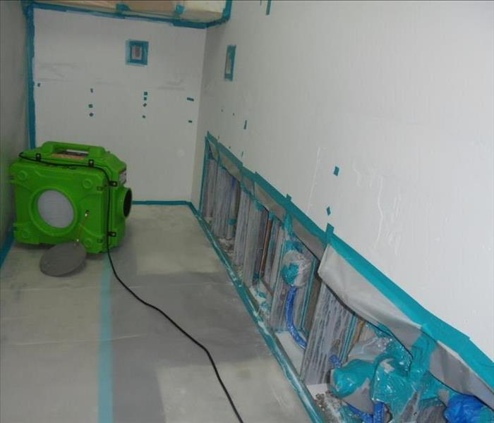Mold Remediation - Los Angeles