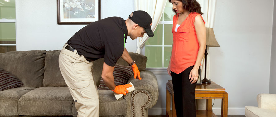 Silver Lake, CA carpet upholstery cleaning