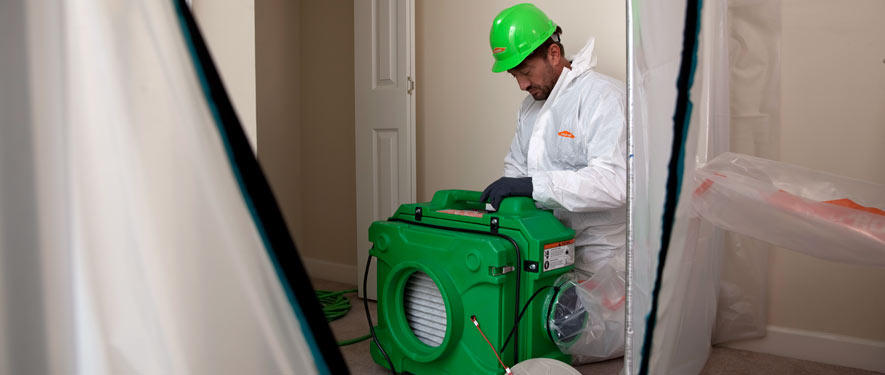 Los Angeles, CA mold cleanup